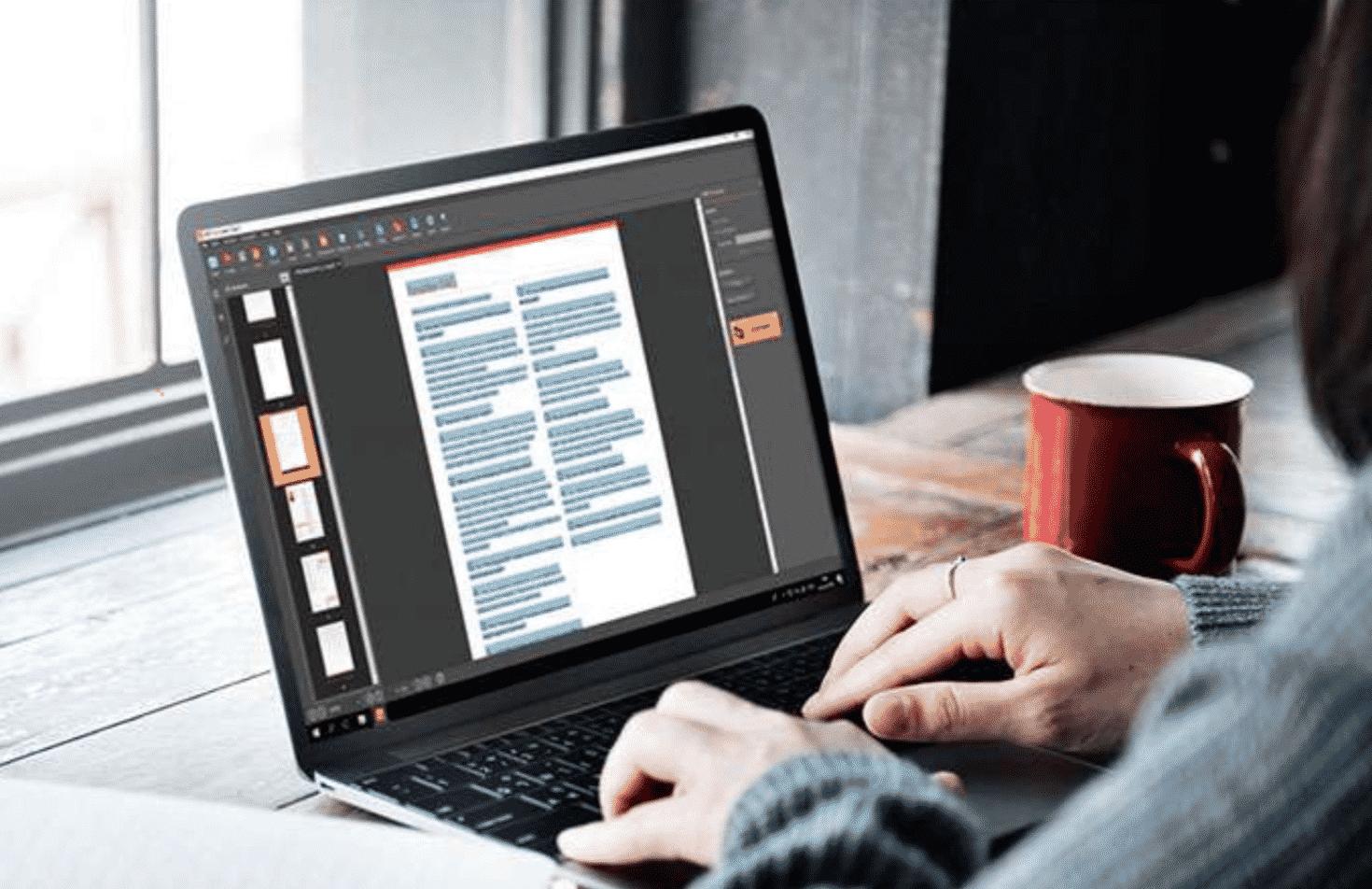 Exploring PDF Bear